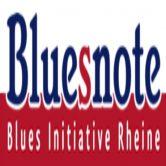 Bluesnote präsentiert: CHRIS KRAMER & BEATBOX'N'BLUES
